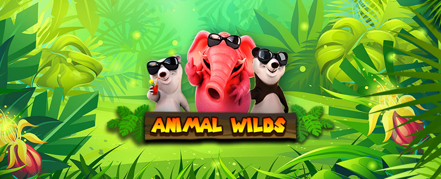 Animal Wilds Slot